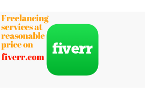 Those freelance services price of fiverr may surprise you