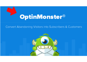 Why optinmonster pricing plans seem to be cheaper?