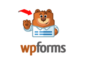 About WPForms what you never knew before