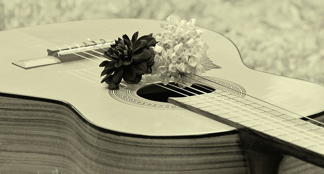 e830b90a2ef1093ed1584d05fb1d4390e277e2c818b415499df1c979a6e8 640 - Want To Learn To Play The Guitar? Read On.