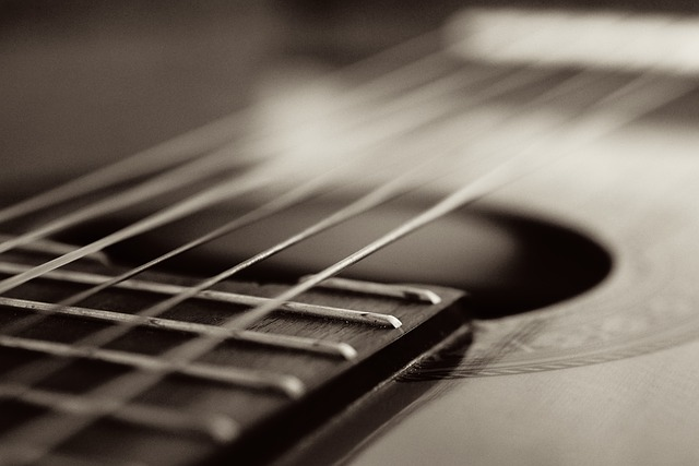 how to learn guitar  some tips for success 1 - How To Learn Guitar - Some Tips For Success