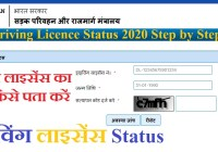 Driving Licence Status