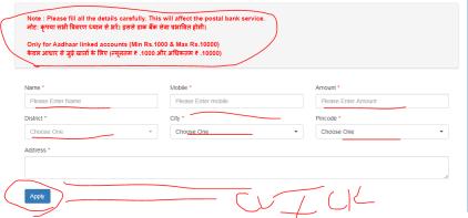 Haryana Cash Delivery Service form