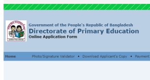 primary school teacher application form