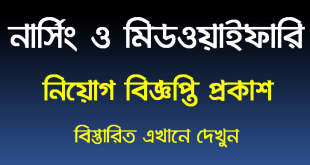 Bangladesh Nursing and Midwifery Council Job Circular 2020