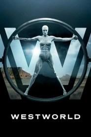 Westworld (Online)
