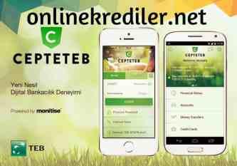 cepteteb online kredi