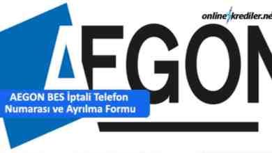 Photo of 08502220312 AEGON BES İptali Telefon ve Ayrılma Formu