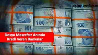 Photo of Dosya Masrafsız Anında Kredi Veren Bankalar 2021