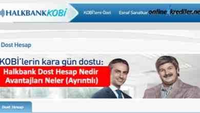 Photo of Halkbank Dost Hesap Nedir Avantajları Neler (Ayrıntılı)