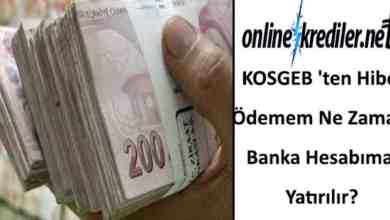 Photo of KOSGEB ten Hibe Ödemem Ne Zaman Banka Hesabıma Yatırılır