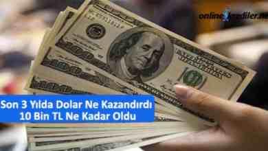Photo of Son 3 Yılda Dolar Ne Kazandırdı 10 Bin TL Ne Kadar Oldu