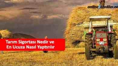 Photo of Tarım Sigortası Nedir ve En Ucuza Nasıl Yaptırılır