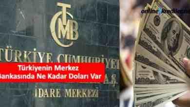 Photo of Türkiyenin Merkez Bankasında Ne Kadar Doları Var