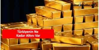 Türkiyenin ne kadar altını var