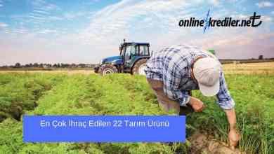 Photo of En Çok İhraç Edilen 22 Tarım Ürünü