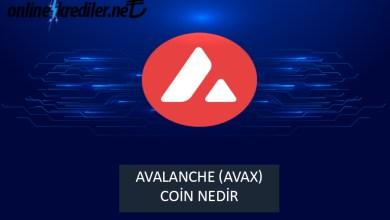 Photo of Avalanche (AVAX) Coin Nedir?