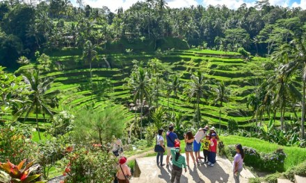 Indonesia's government earmarks US$21.5 million to lift tourism businesses