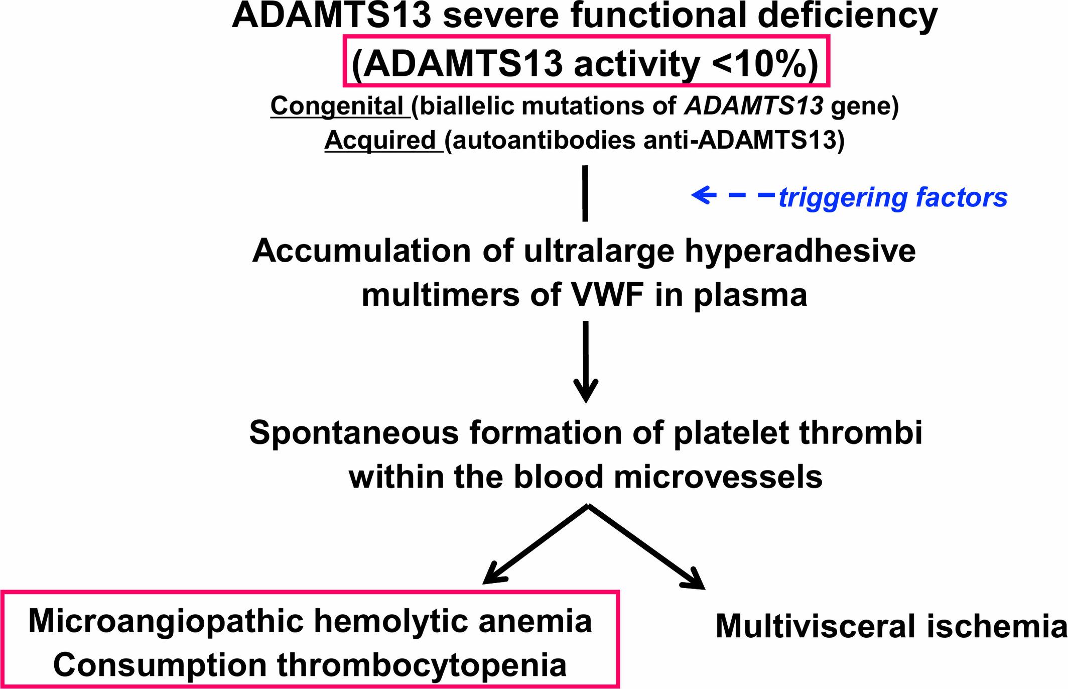 Pediatric thrombotic thrombocytopenic purpura - Joly - 2018 - European  Journal of Haematology - Wiley Online Library