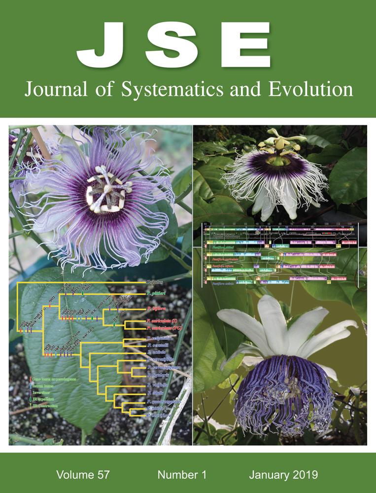 Passiflora Plastome Sequencing Reveals Widespread Genomic