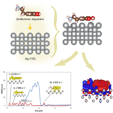 Jurnal Internasional Kimia Kuantum Spesies dopamin netral dan zwitterionic teradsorpsi pada permukaan perak: Investigasi mekanisme interaksi DFT