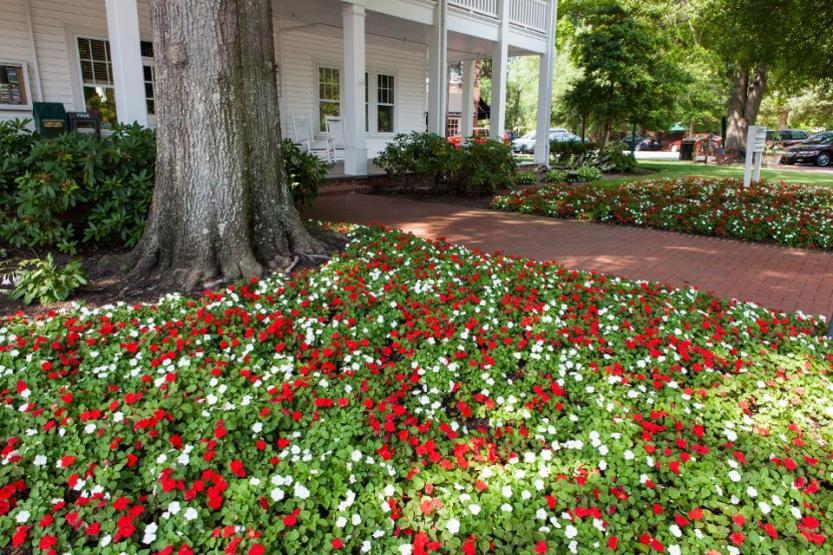 Shady square on Cherokee Rd in the North Carolina Sandhills town of Pinehurst