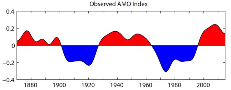 AMO phase