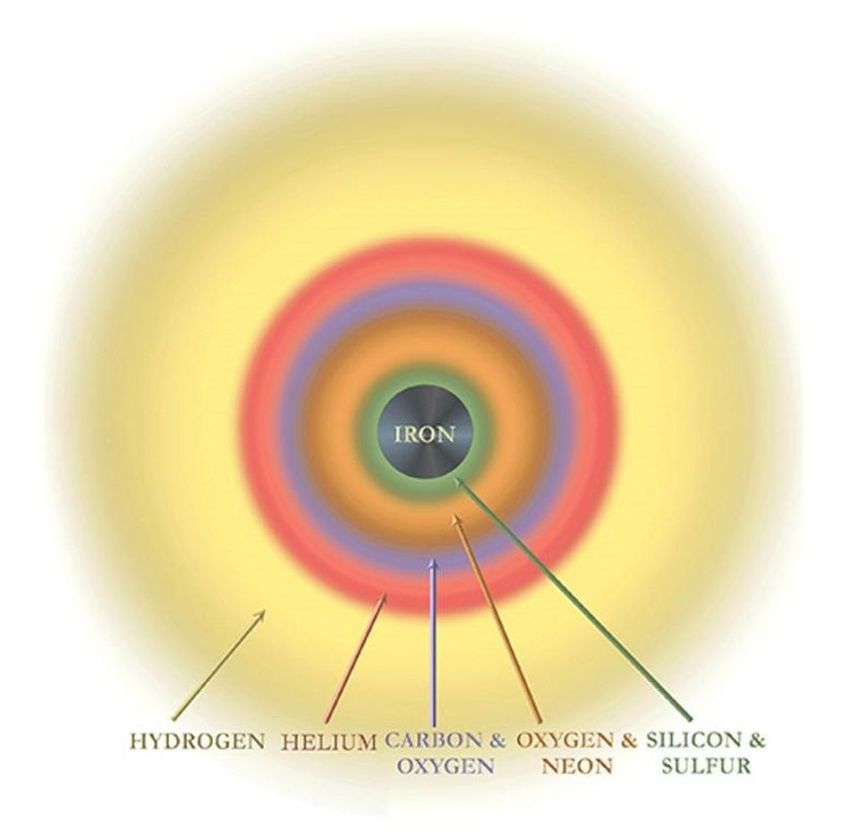 As it nears the end of its evolution, heavy elements produced by nuclear fusion inside the star are... [+] concentrated toward the center of the star. When the star explodes, the vast majority of the outer layers absorb neutrons rapidly, climbing the periodic table, and also get expelled back into the Universe where they participate in the next generation of star and planet formation.