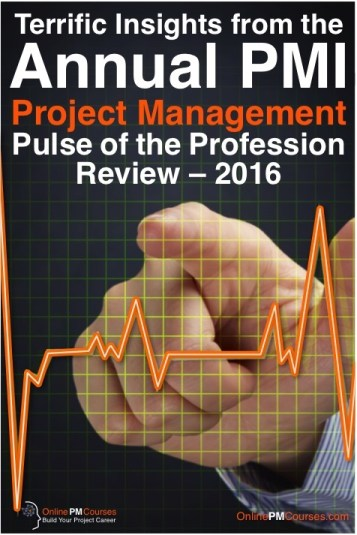 PMI Project Management Review 2016