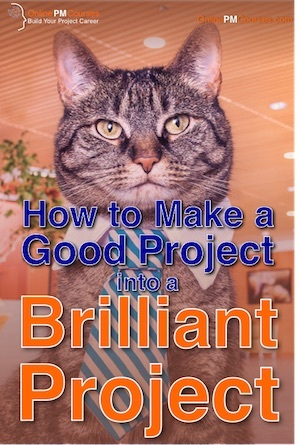 How to make a Good Project into a Brilliant Project