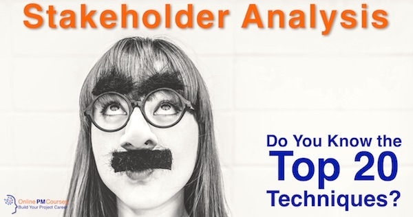 Stakeholder Analysis: Do You Know the Top 20 Techniques