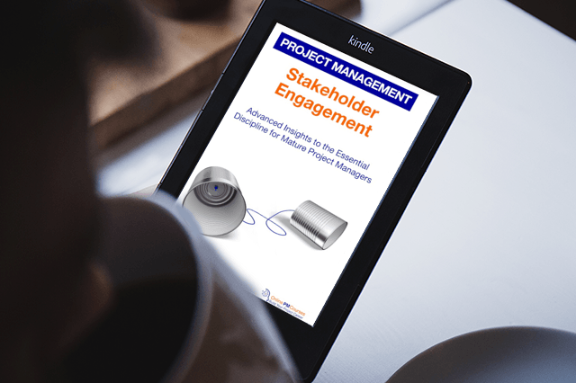 Stakeholder Engagement - Kindle