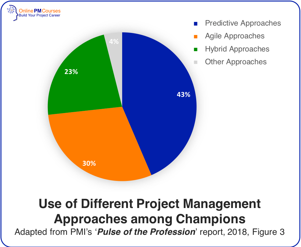 Use of Different Project Management Approaches among Champions