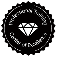 Professional Training Center of Excellence | PTCoE
