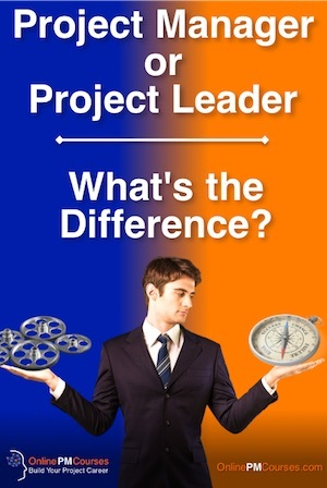 Project Manager or Project Leader
