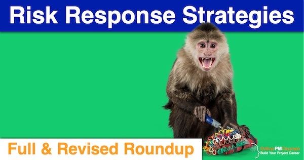 Risk Response Strategies - Full Revised Roundup