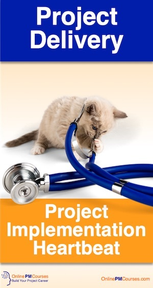 The Secret of Project Delivery: Project Implementation Heartbeat