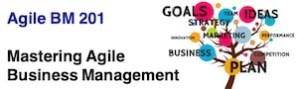 Agile BM201 - Mastering Agile Business Management 300