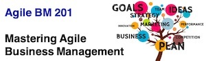 Agile BM201 - Mastering Agile Business Management 300