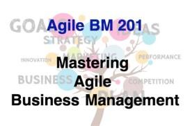 Agile BM201 - Mastering Agile Business Management 600