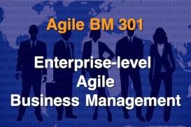 Agile BM301 - Enterprise-level Agile Business Management 600