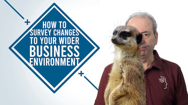 How to Survey Changes to Your External Business Environment | Video
