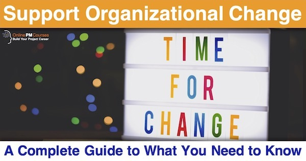 Support Organizational Change: A Complete Guide to What You Need to Know