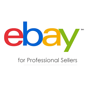 eBay Professional Sellers
