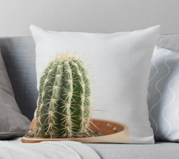 cute cactus pillow