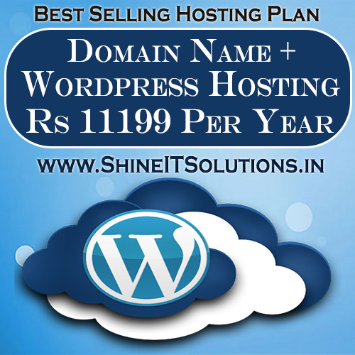 Domain Name + Wordpress Hosting at Rs 11199 Per Year | Best Plan of Shine IT Solutions
