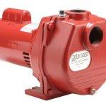 Red-Lion-34-HP-Self-Priming-Sprinkler-Pump-0