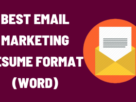 Email Marketing Resume Format