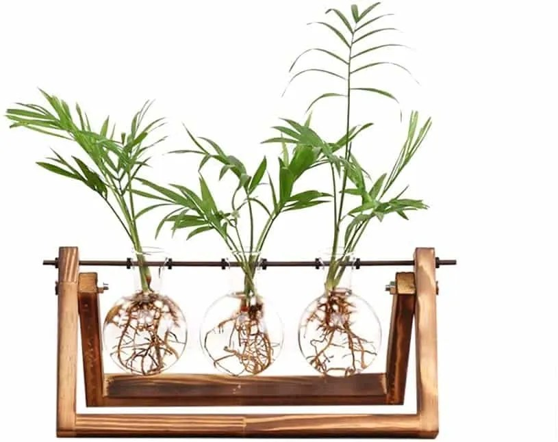 Desktop Glass Planter Bulb Vase with Retro Solid Wooden Stand