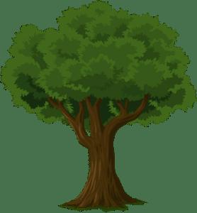 Read more about the article पेड़ के बारे में हिंदी में कविता | Poem about tree in Hindi
